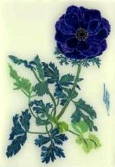 草と花のカタチ(botaniko press ・ 瀧谷美香)_d0263815_1547670.jpg
