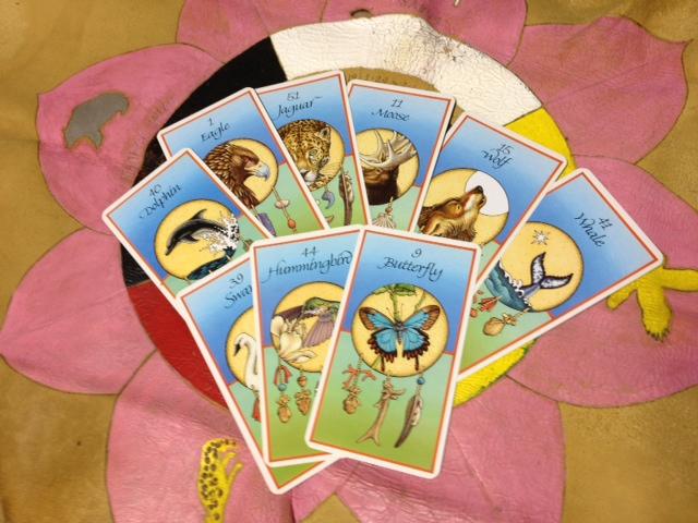 「メディスン・カード」勉強会~開催_a0258233_16413279.jpg