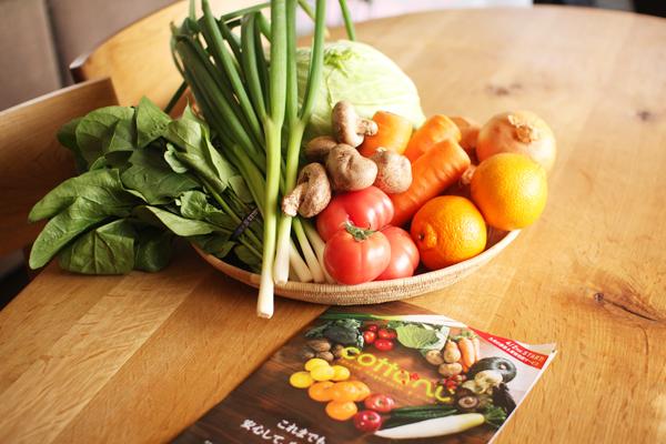 お野菜便_f0149855_19433270.jpg