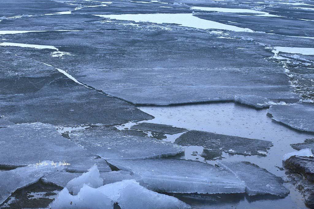 屈斜路湖の氷より~_a0039860_18425039.jpg