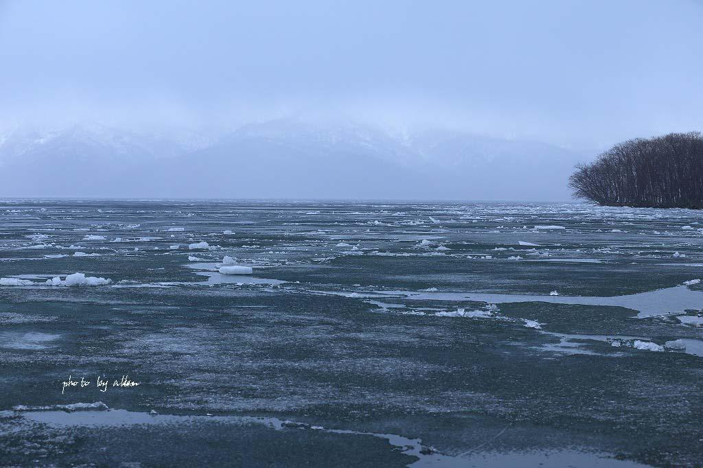 屈斜路湖の氷より~_a0039860_18425357.jpg