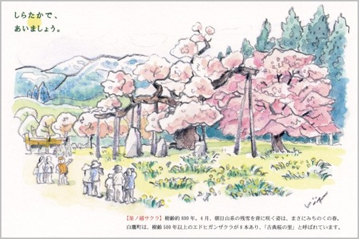 「しらたかで、あいましょう。」のタイトルで村岡 仁・画 白鷹町のポストカードが完成。_a0086270_2022547.jpg