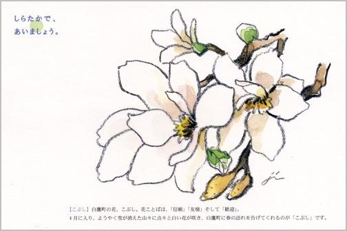 「しらたかで、あいましょう。」のタイトルで村岡 仁・画 白鷹町のポストカードが完成。_a0086270_20255056.jpg