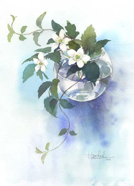 野苺の花_f0176370_18422111.jpg