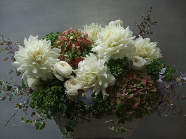 オークリーフ(ダリア・ヘブンリーピースと紫陽花のアレンジメント)_f0049672_1554767.jpg