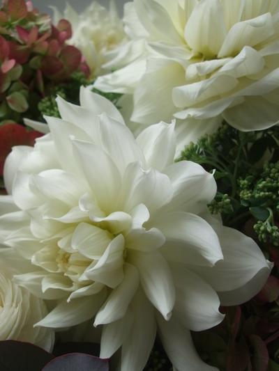 オークリーフ(ダリア・ヘブンリーピースと紫陽花のアレンジメント)_f0049672_156106.jpg