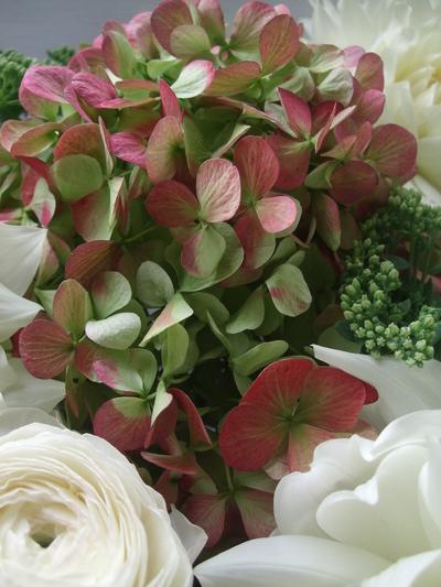 オークリーフ(ダリア・ヘブンリーピースと紫陽花のアレンジメント)_f0049672_156546.jpg