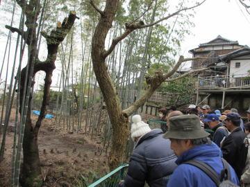 5/3(祝) GWに小田原城遺構めぐりはいかがですか?_c0110117_161535.jpg