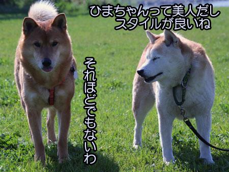 c0166018_14275727.jpg