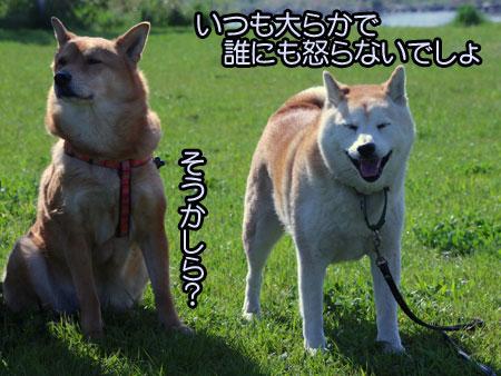 c0166018_14281266.jpg