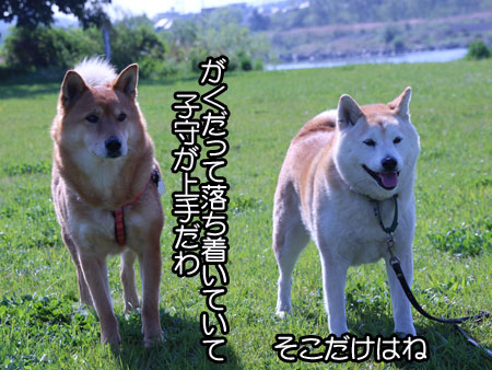 c0166018_14281960.jpg