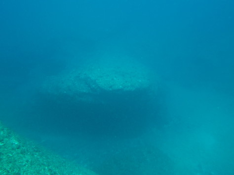 4月17日残波岬ダイビングⅡ_c0070933_21334723.jpg