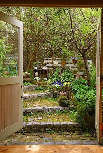 「mimosa Garden*Diary」のミモザガーデンさん登場!_c0039735_1151835.jpg