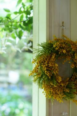「mimosa Garden*Diary」のミモザガーデンさん登場!_c0039735_1157639.jpg