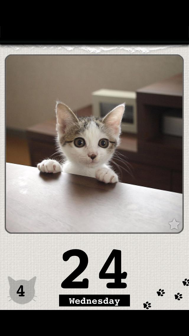 かれんにゃーLite 猫の日めくりカレンダー 4