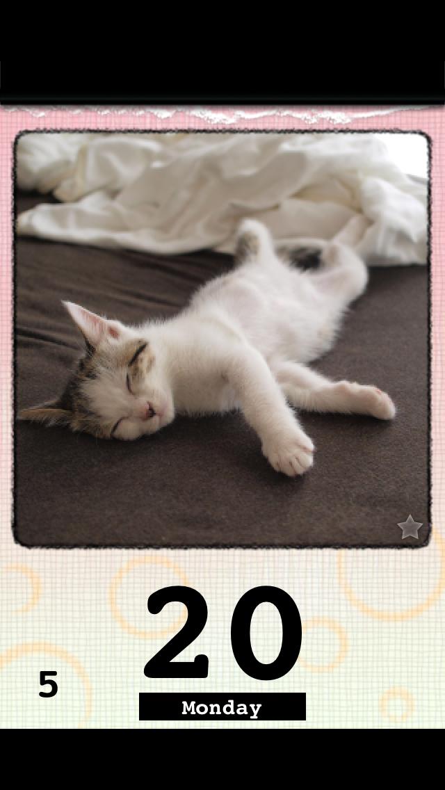 かれんにゃーLite 猫の日めくりカレンダー 2