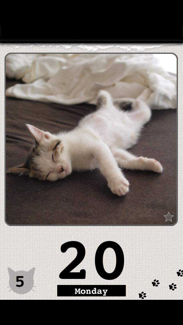 かれんにゃーLite 猫の日めくりカレンダー 1