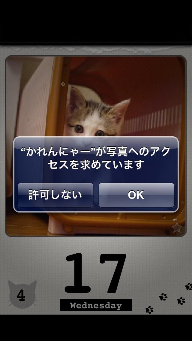 かれんにゃーLite 猫の日めくりカレンダー 3