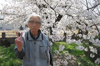 お花見<アクティブライフ山芦屋・デイサービス>_c0107602_11534333.jpg