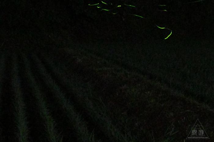 176 八雲村 ~ゲンジボタルの里~_c0211532_16413571.jpg
