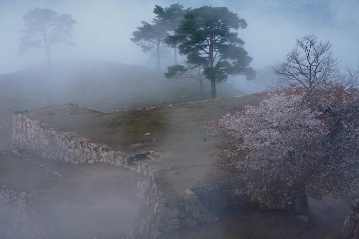 寂しい春_a0294534_1932091.jpg