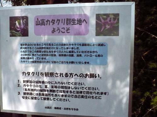 桜は早く終わっても_d0127634_10324049.jpg
