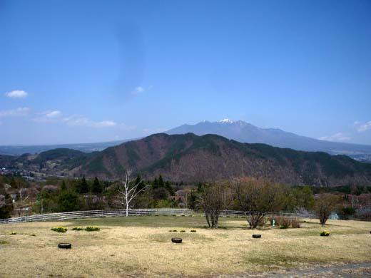 桜は早く終わっても_d0127634_10351946.jpg