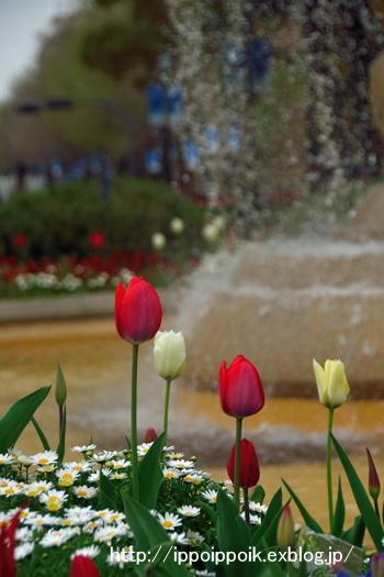 春風とともに_e0152866_7234167.jpg