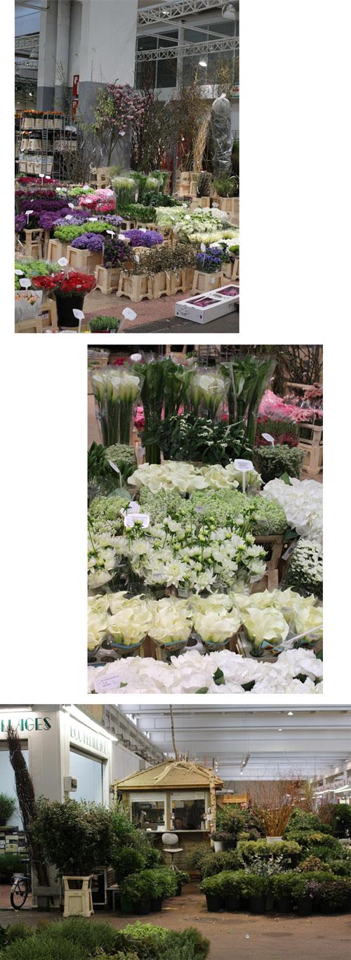paris ランジス花市場へ_f0127281_026126.jpg