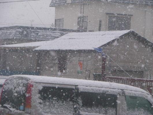 ◆ 外は真っ白です!! ◆_c0078202_6191296.jpg
