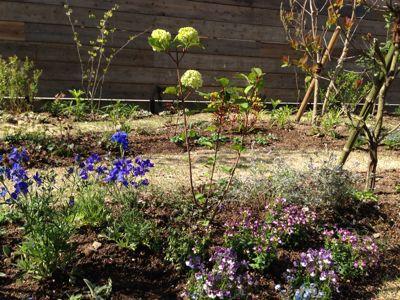 春の暖かさ。_b0253627_23415124.jpg