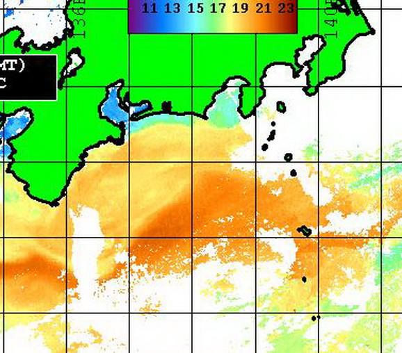 遠州灘の潮は・・・・【カジキ・マグロ トローリング】_f0009039_13575382.jpg