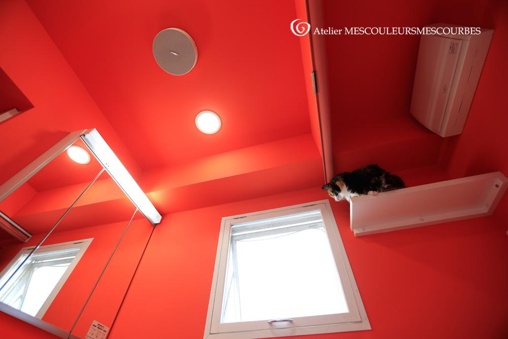 うちの水回りスペースは、壁天井までこの色にしました。_e0194450_527886.jpg