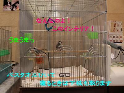 b0158061_2253060.jpg