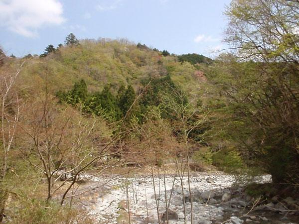 お山は桜餅♪〜_c0110361_16402928.jpg