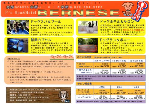 P\'s Spa&Hotel BERNESE OPEN 4/27 予約開始_b0185375_8122795.jpg