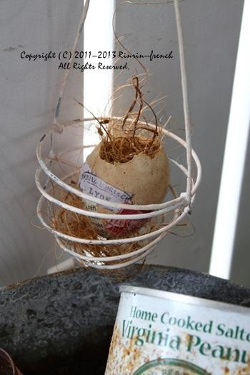 掲載のお知らせ & 卵の殻アレンジ。_e0237680_17421338.jpg