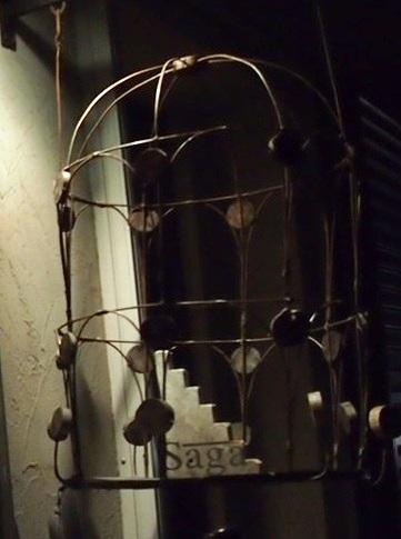 籠からの飛び立ち_a0131787_21202674.jpg