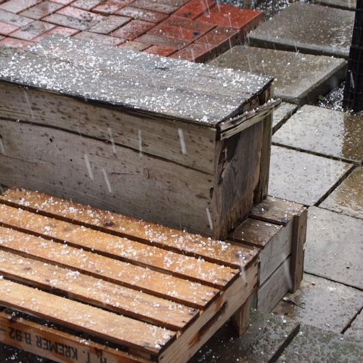 雹が降って大慌て_a0292194_2045335.jpg
