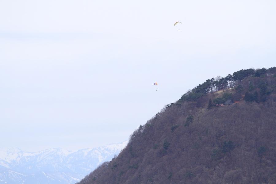 今日もC61旧客を山の上から撮ってみた - 2013年春・上越線 -_b0190710_2039236.jpg