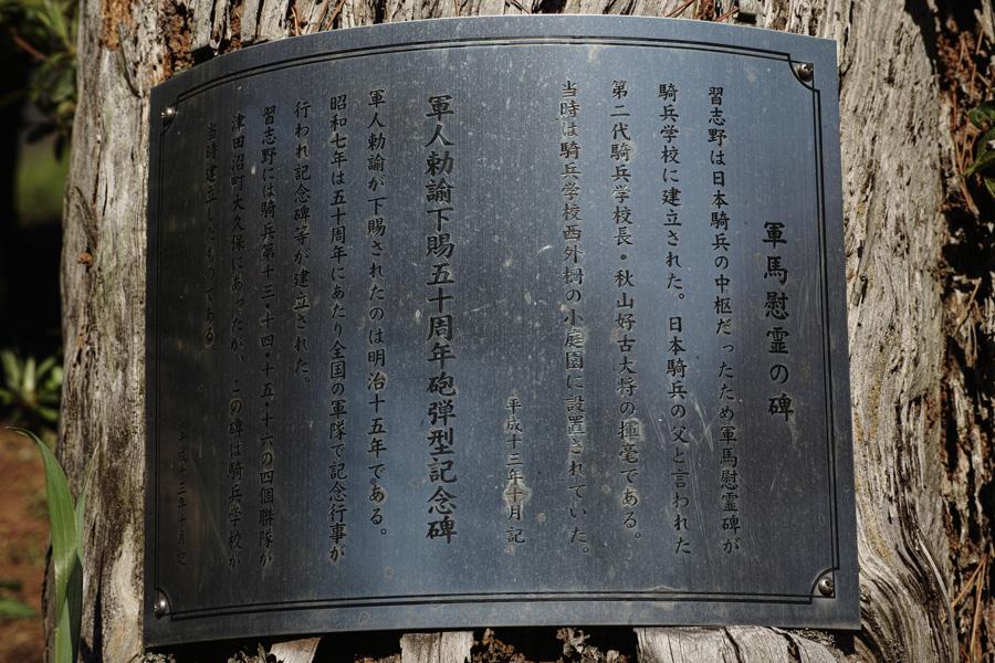 日本騎兵習練の場所~習志野の旅~_c0223825_15121437.jpg