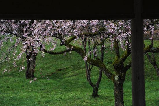 卯辰山公園(5)_c0093046_891634.jpg