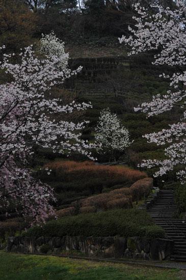 卯辰山公園(5)_c0093046_895045.jpg