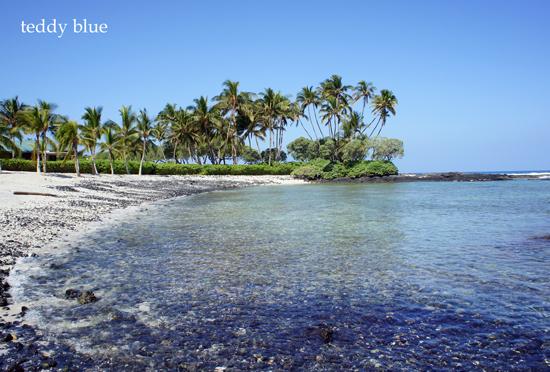The Fairmont Orchid, Hawaii  ザ フェアモント オーキッド _e0253364_14444895.jpg