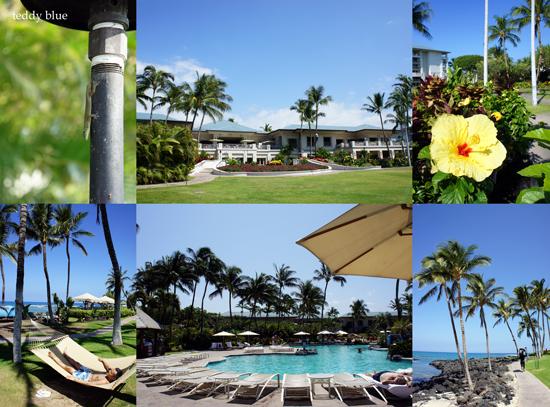The Fairmont Orchid, Hawaii  ザ フェアモント オーキッド _e0253364_14482940.jpg