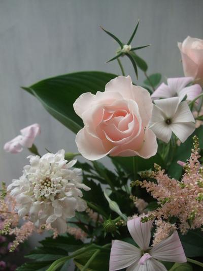 オークリーフ(透明感のある花たち)_f0049672_12385814.jpg