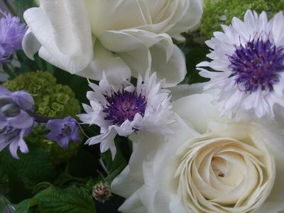 オークリーフ(透明感のある花たち)_f0049672_12402123.jpg
