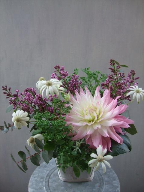 オークリーフ(透明感のある花たち)_f0049672_12492289.jpg