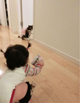 突然のご来訪★ & きなこ姉さん(愛猫)一加を見守る。_d0224894_1492688.jpg