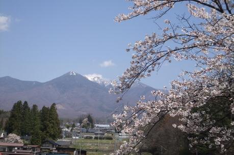 新緑の富士見でわが友、故岡部牧夫の落葉舎を訪ねる_c0242406_7404596.jpg